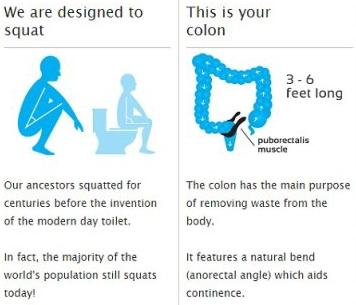 Squat poop