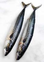 Рибата