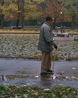 Дъжд в парка
