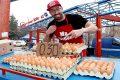 цена на яйцата