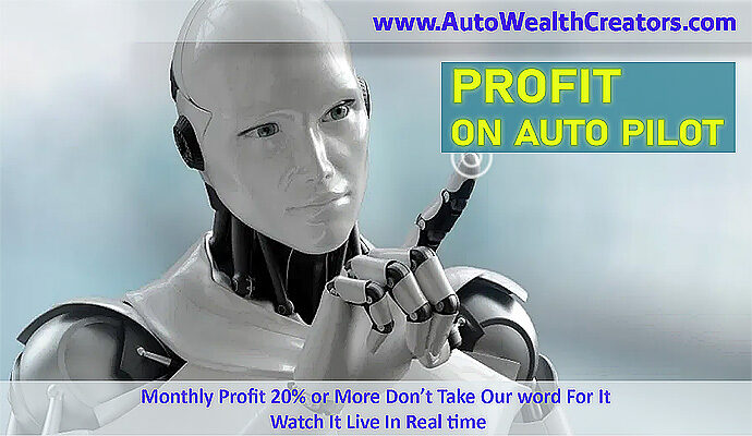 Interview with Jeremy Sanchez and Wayne Gin for forex expert advisor which trades to forex market on auto pilot